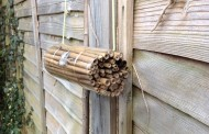 How to Make a Bee Shelter