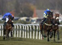 Grand National Hope for Horses
